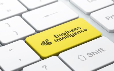 The Business Intelligence You Don't Know That You Need For Your San Antonio, Boerne, Texas hill country Company